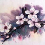Sakura: hombre – mujer, ideas interesantes, significado