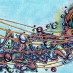 Medusa: ideas para chicos y chicas