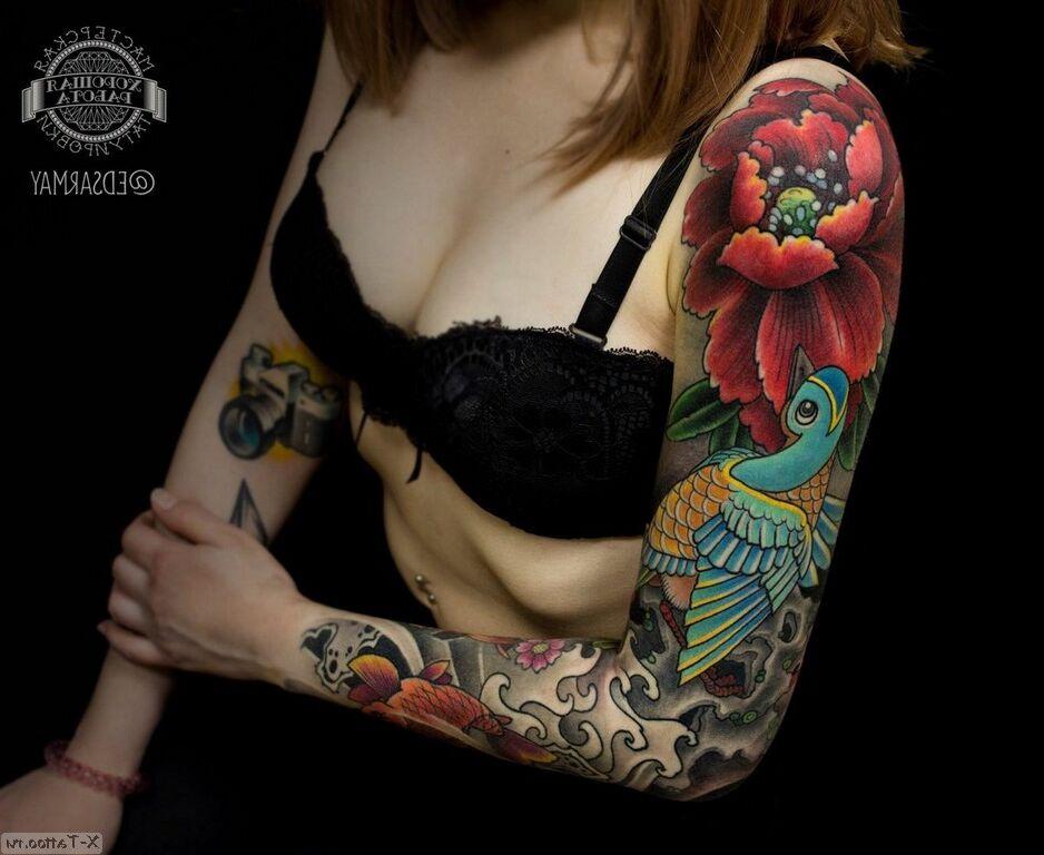 tortuga y color a
