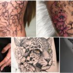 COLLAGE Tatuajes de Leon Tigre Gatos