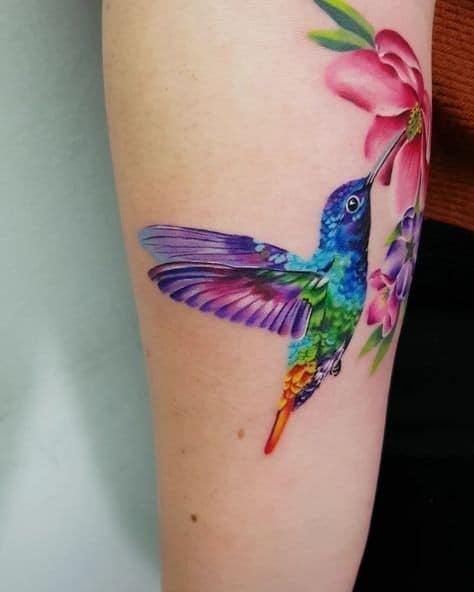 Tatuajes de Colibries Mujer multicolor picando flor roja