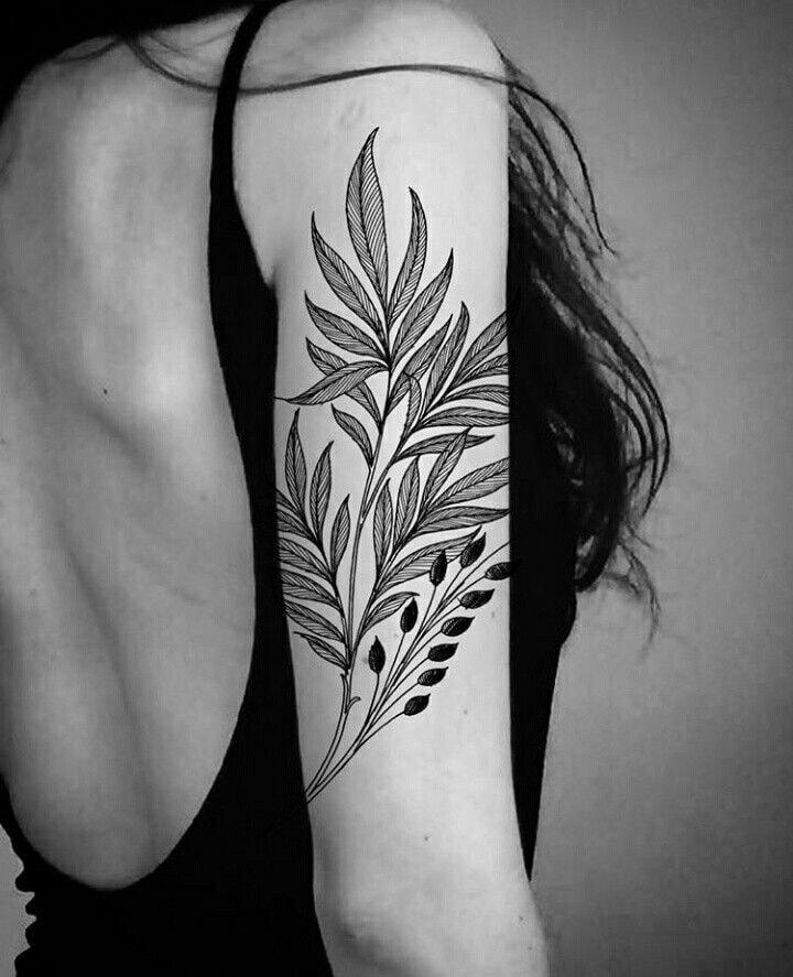 Tatuajes en el Brazo ramas
